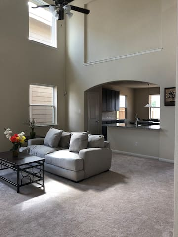 Bellaire/Sugarland/Galleria TX Newly Built Home