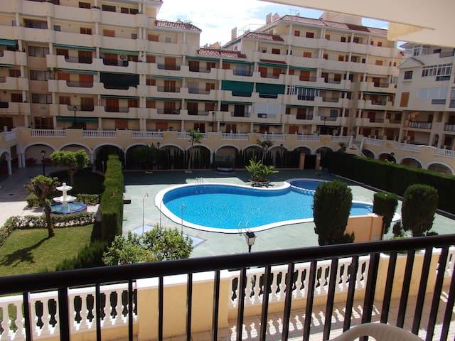VińaMar II - La Mata - Apartment