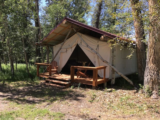 The Moose, Glamping Cabin @ Quaking Aspen Ranch