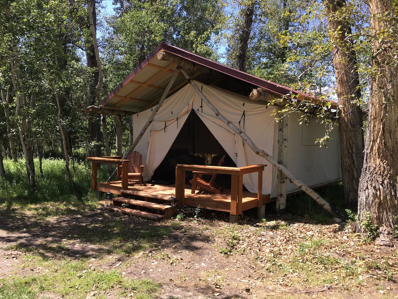 The Moose Glamping Cabin @ The Ranch