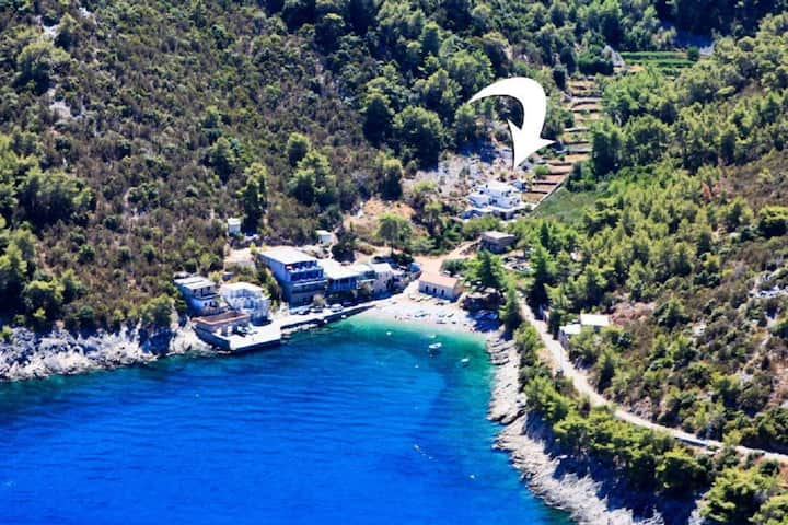 Apartment Dena - 60 m from beach: A1(2+1) Bogomolje, Island Hvar