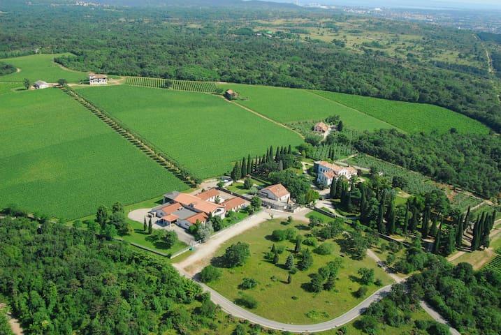 Camera in Villa Veneta in Castelvecchio vini. - Sagrado - Гостевые апартаменты