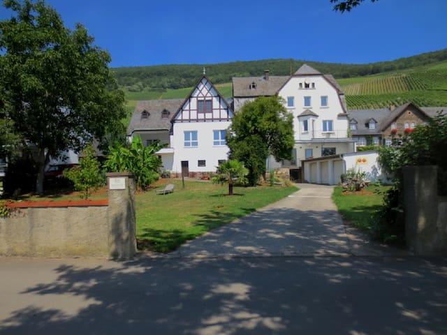 Apartment  MOSELGARTEN  Im Weingut 2 mit Balkon - Piesport - Leilighet