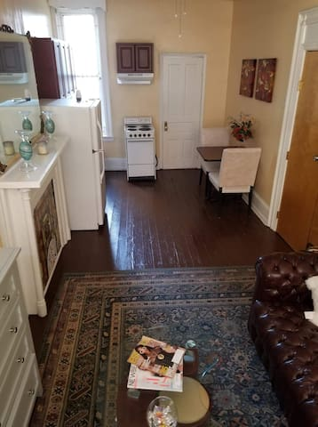 1B1B w/yard Apt near Art Museum
