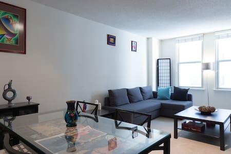 Enjoy a real DC experience! - Washington - Apartment