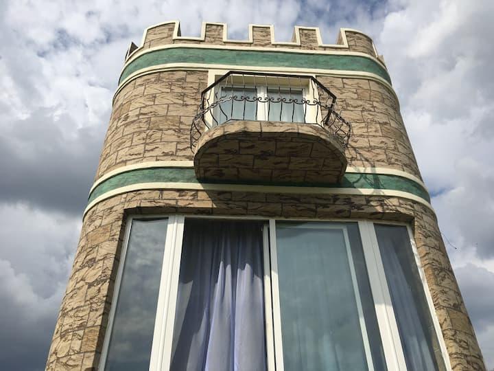 Средневековая Башня у пруда - Арт-дом целиком, вид