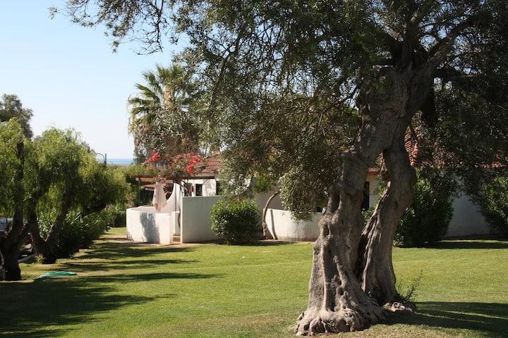 One bedroom Villa at Pedras D'el Rei