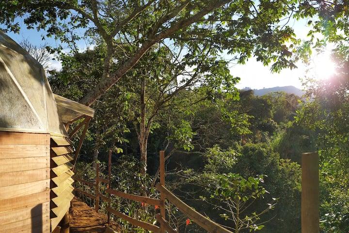Domo Lodge, disfruta habitando espacios naturales