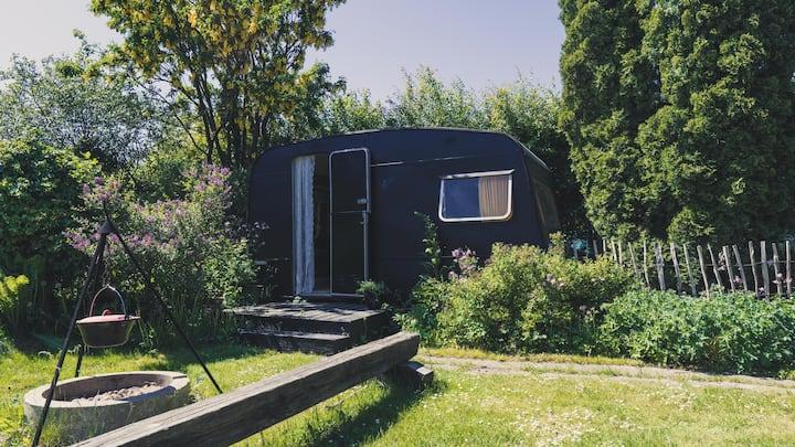 Skøn lille isoleret campingvogn i hyggelig have