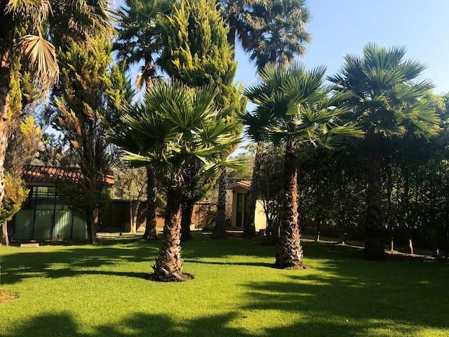 Hermosa Recidencia con 4 recamaras con jardín.