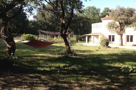 Maison avec piscine en Provence - Sérignan-du-Comtat