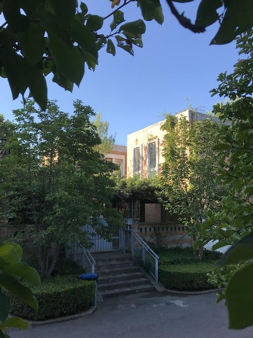 庭院别墅 早晨的东侧窗