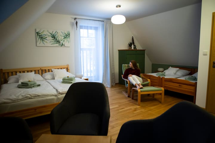 Apalucha49 Čeladná-Zelený pokoj - 4 osoby