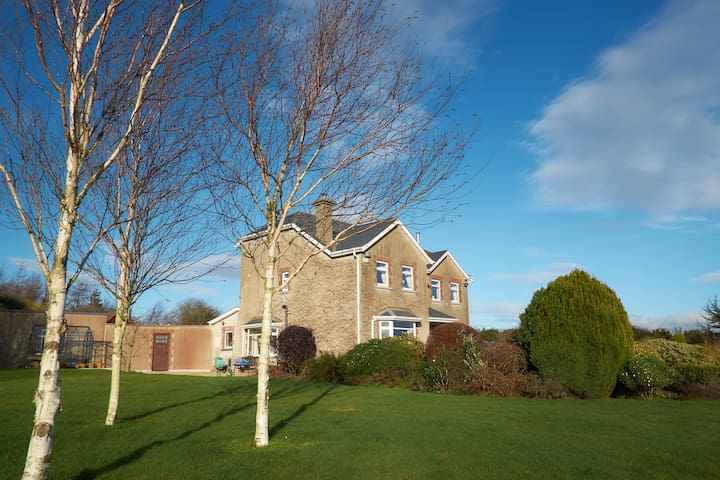 Ideal for group painting or relaxation break - Wexford - House