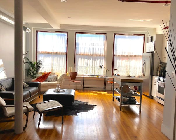 Stylish Sun-filled Downtown New Haven Apartment