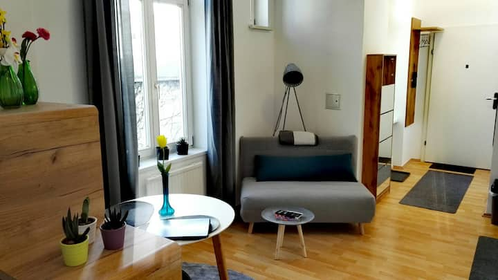 Nice and quiet studio near city center