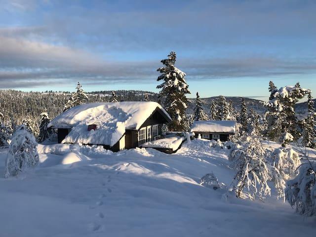 Hyttekos på Kyrkjebygdheia i Nissedal