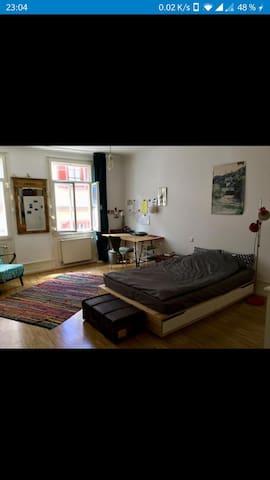 WG-Zimmer in bester Altstadtlage