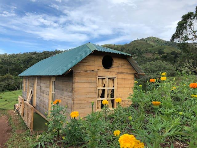 Habitaciones Olán