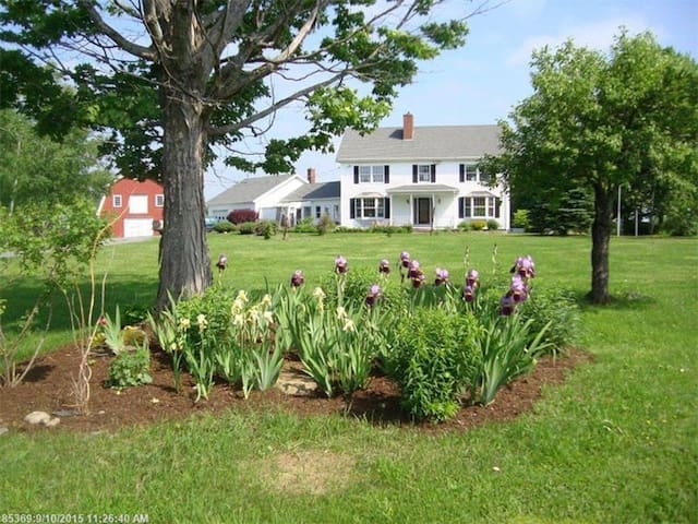 Fox Glen Farm - Dover-Foxcroft - Bed & Breakfast