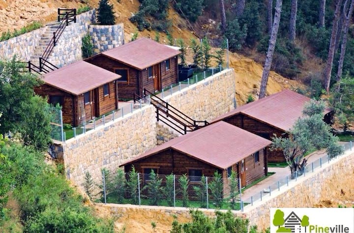 PinevilleLebanon 2 Bedrooms ChaletR
