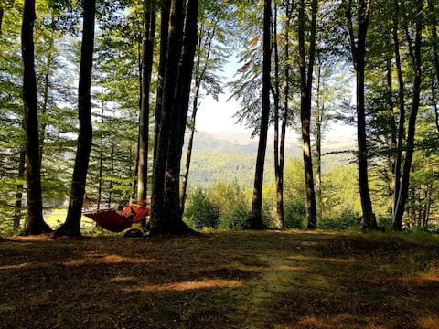 Cabana Cheia Fericirii ♥ Forest Family Retreat
