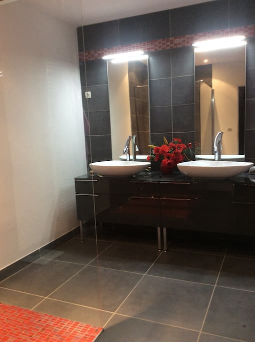 Salle de bain avec une douche à l'italienne