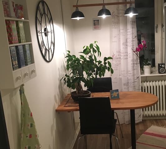 Clean and charming studio in central Gothenburg