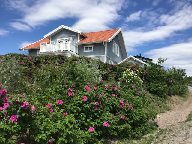 House with sea view on the idyllic Sannäs - Tanum V - House