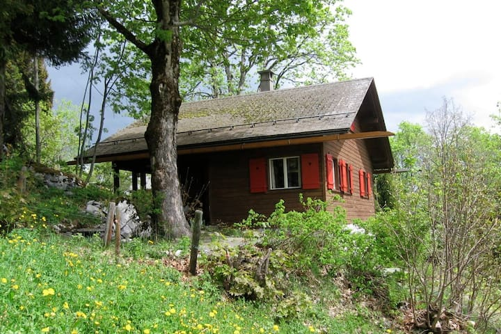 Chalet Oberholzer in Braunwald - Glarus Süd - Alpstuga