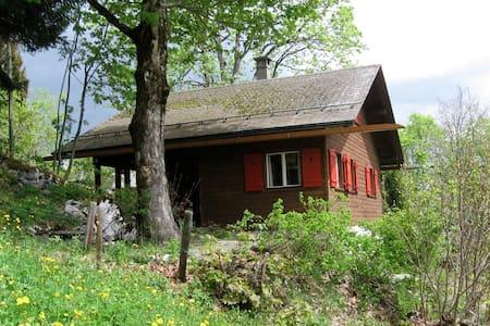 Chalet Oberholzer in Braunwald - Glarus Süd - 木屋