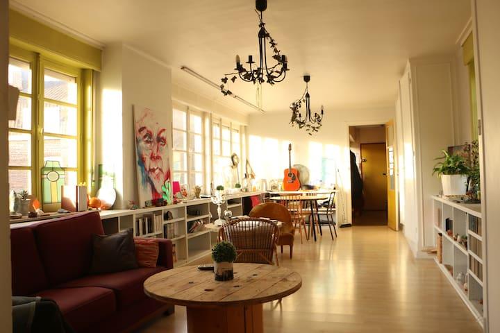la petite prairie dans la maison - Lille - Apartment