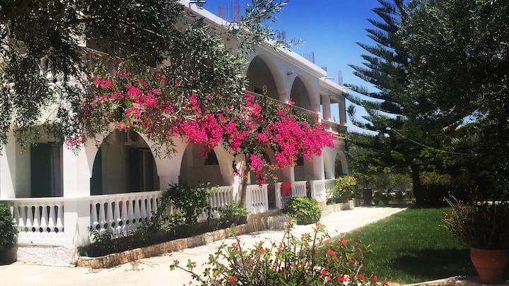 Mersina Studios, Zakynthos: the right place to be!