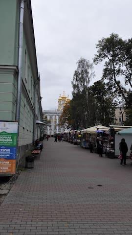 Дом у Екатерининского Дворца - Pushkin - Leilighet