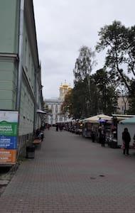 Дом у Екатерининского Дворца - Pushkin - Apartmen