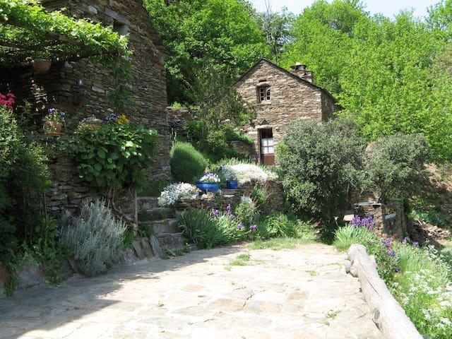 Gite de la Foun del Pous - Saint-Frézal-de-Ventalon - Casa