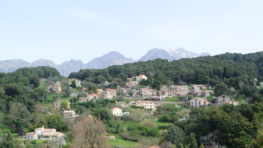 Location Corse du SudTavera - Tavera - House