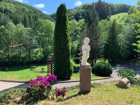 Ferienwohnung 60 qm im Schwarzwald Rai Mattiss