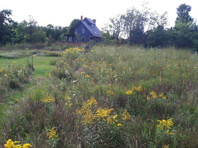 Cuckoo's Nest: Solitude & Nature Near Everything