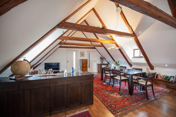 Designer loft in historic center