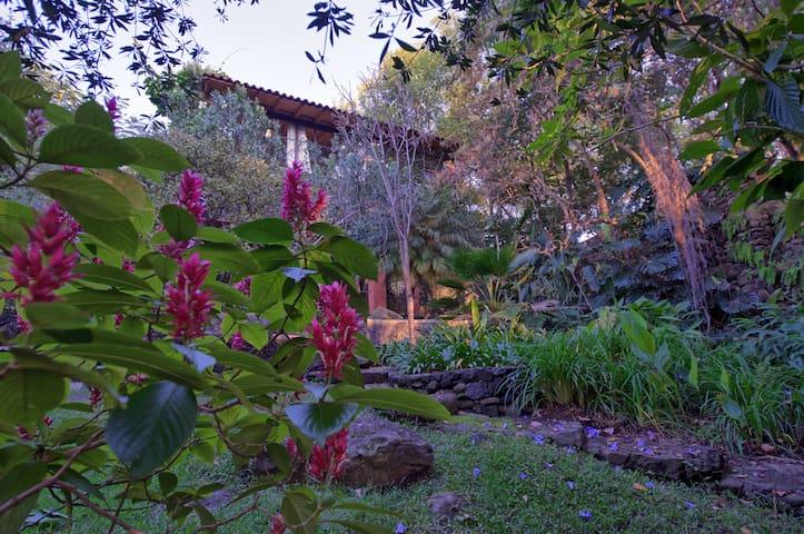 Suite Amate y habitación Jazmín desde el jardín - Casa Raíz