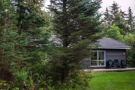 Ny renoveret sommerhus 3 km fra Rubjerg Knude Fyr
