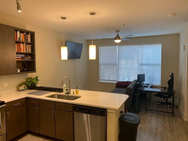 Downtown Apartment by Falls Park on the Reedy