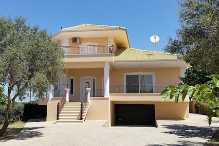Modern villa - Palairos