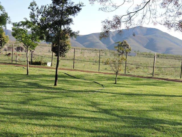 "Kareedouw ""Amper-Plaas"" Guesthouse: Jewel of SA"