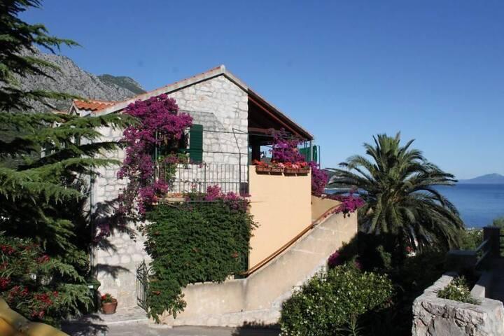 Two bedroom apartment with balcony and sea view Igrane, Makarska (A-2660-a) - Igrane - Wohnung