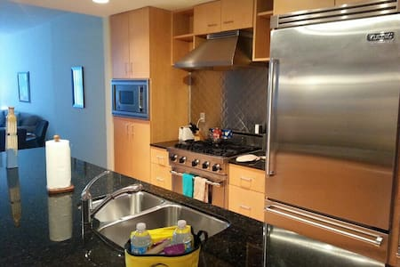 Downtown Tampa 1 Bed 1 Bath - Tampa - Apartment