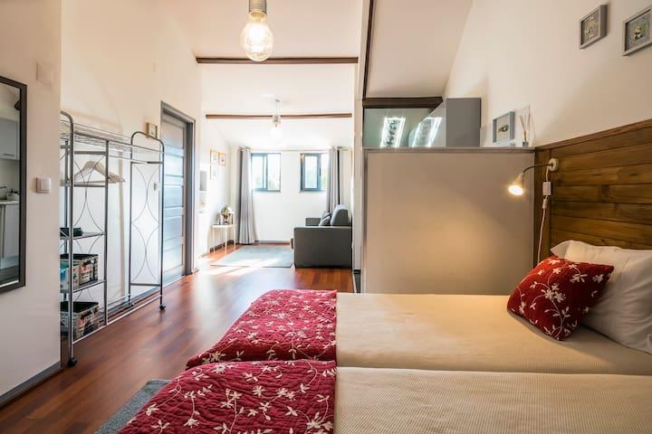 The luxurious Attic À Francos - BG Apartments New