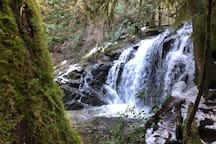 Homesite Creek waterfall minutes away from the Treehouse