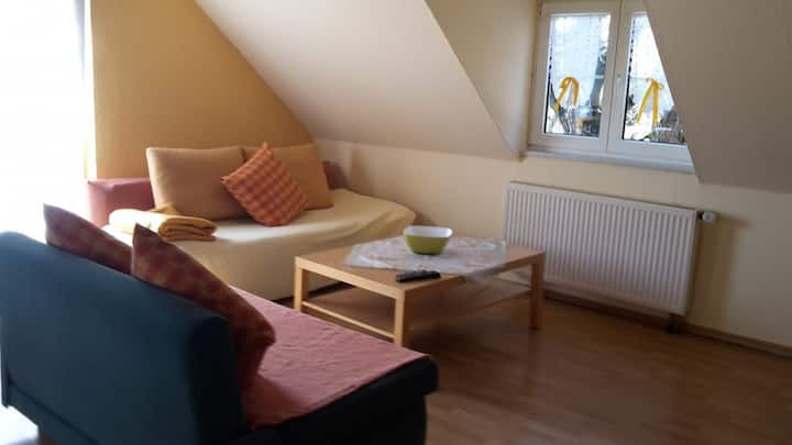"Cosy Apartment ""Ferienwohnung Bergblick"" on Farm with Mountain View, Wi-Fi, Balcony & Garden; Parking Available, Pets Allowed"